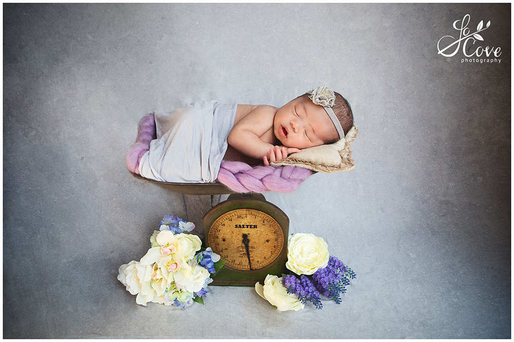 posing a newborn on some scales